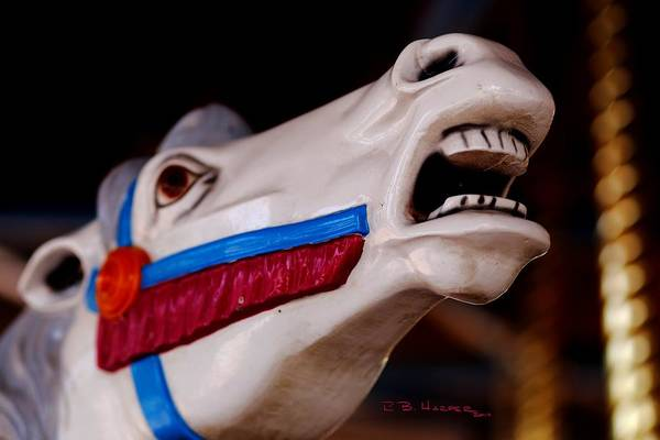 Photograph - Carousel Horse by R B Harper