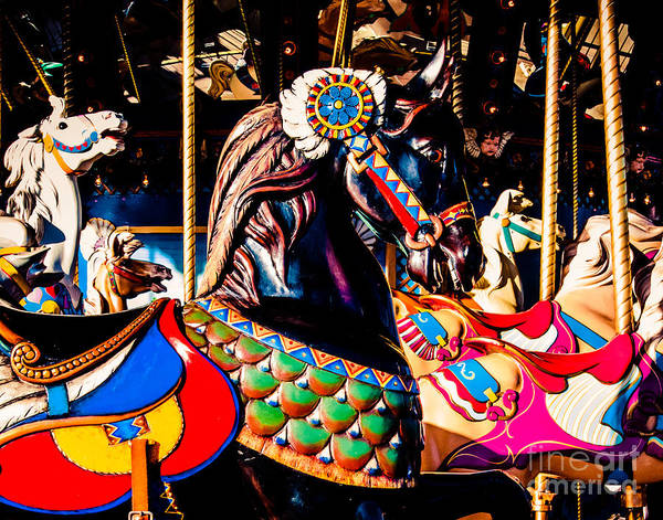 Steed Photograph - Carousel In Black by Sonja Quintero
