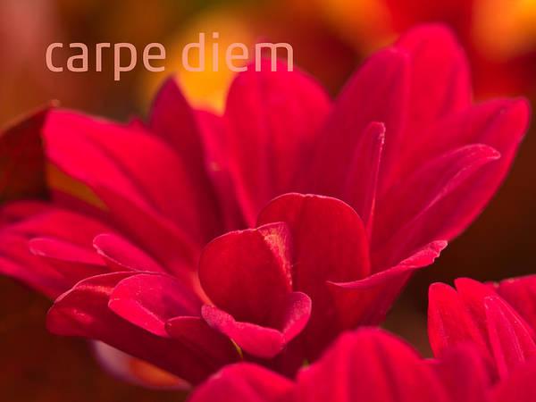 Mixed Media - Carpe Diem by Lutz Baar