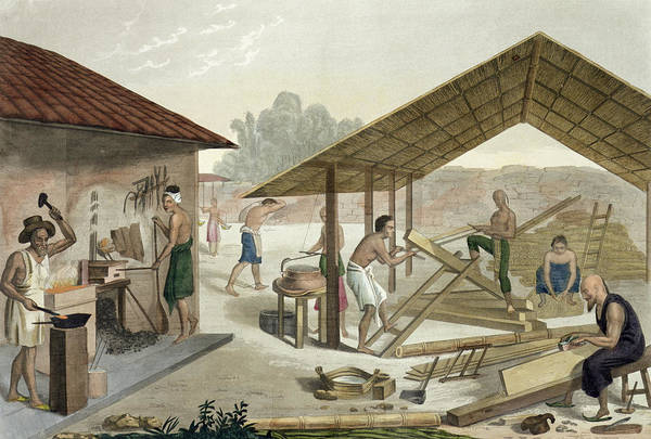 South Drawing - Carpentry Workshop In Kupang, Timor by Francesco Citterio