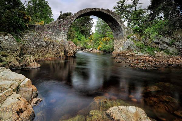 Photograph - Carrbridge by Grant Glendinning