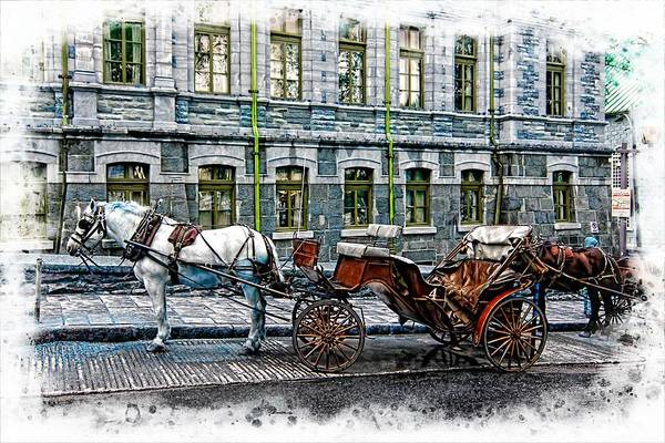 Photograph - Carriage Rides Series 06 by Carlos Diaz