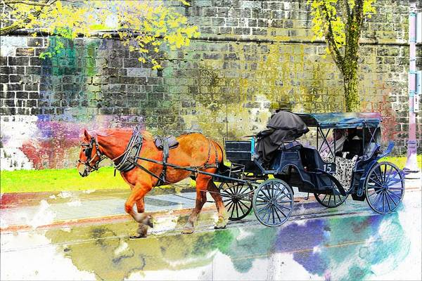 Photograph - Carriage Rides Series 08 by Carlos Diaz