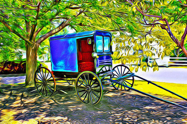 Queens Birthday Photograph - Amish Carriage by Carlos Diaz