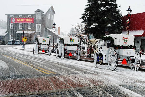 Frankenmuth Photograph - Carriage Ride by Janice Adomeit