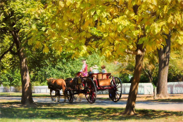 Photograph - Horse Drawn Carriage Ride Williamsburg Va by Ola Allen
