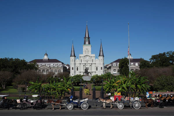 St Andrew Photograph - Carriages In Front Of A Cathedral, St by Animal Images