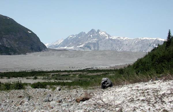 Glacier Bay Photograph - Carroll Glacier by Bruce F. Molnia, Nsidc, Wdc/science Photo Library