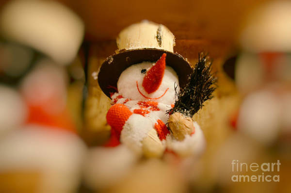 Weihnachten Photograph - Carrot Nose by Sabine Jacobs