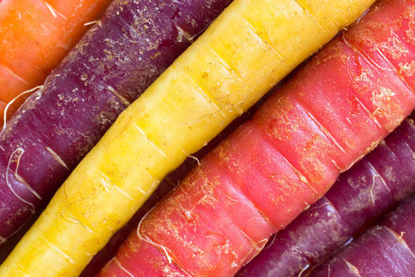 Purple Carrot Photograph - Carrot Rainbow by Heidi Smith