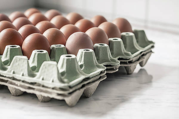 Compartments Photograph - Carton Palette With Brown Eggs by Westend61