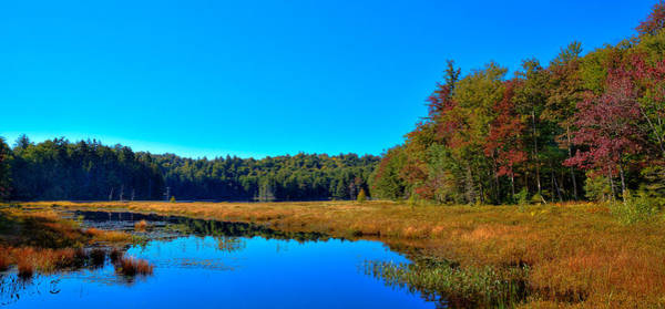 Photograph - Cary Lake In Early Autumn by David Patterson