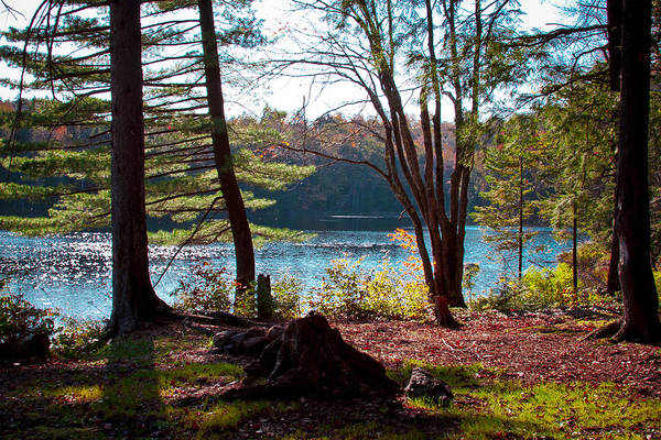 Fulton Chain Of Lakes Photograph - Cary Lake In The Fall by David Patterson