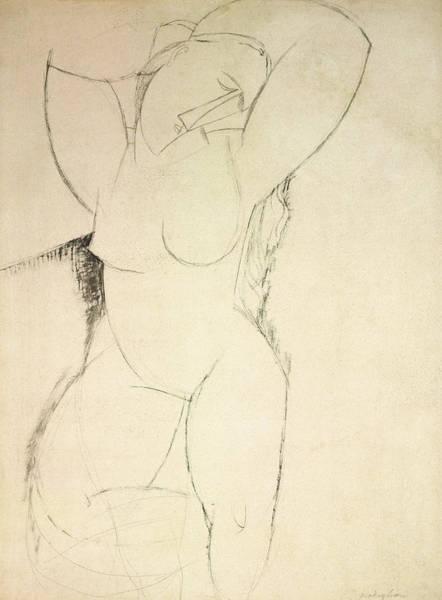 Beautiful Girl Drawing - Caryatid by Amedeo Modigliani
