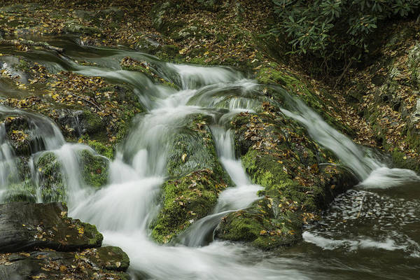 Photograph - Cascade by David Waldrop