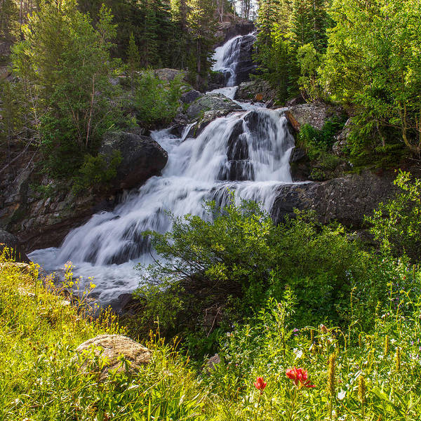Photograph - Cascade Falls - Indian Peaks Wilderness by Aaron Spong