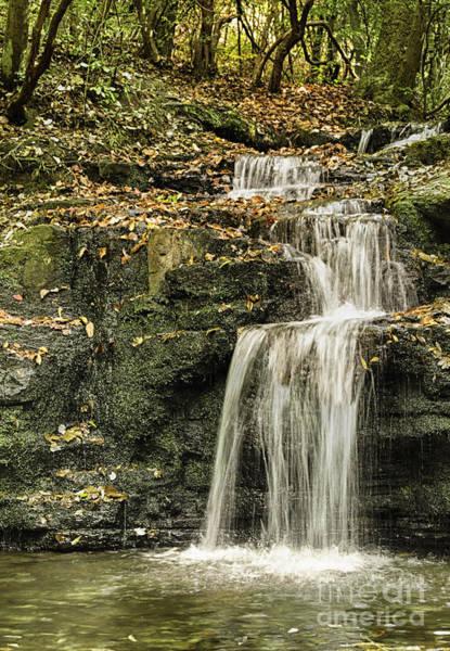 Photograph - Cascade Falls by Heather Roper
