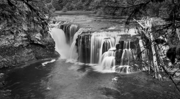 Photograph - Cascading Falls-lower Lewis River by David Millenheft