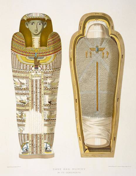 Ancient Egypt Drawing - Case And Mummy In Its Cerements by American School