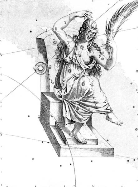 First Star Photograph - Cassiopeia Constellation by Royal Astronomical Society/science Photo Library