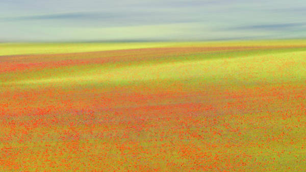 Poppies Photograph - Castelluccio Colors by Roberto Marchegiani