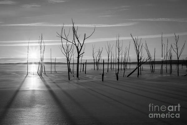 D800 Photograph - Casting Shadows Bw by Michael Ver Sprill