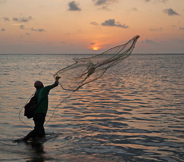 Photograph - Casting The Net by Susan Rovira