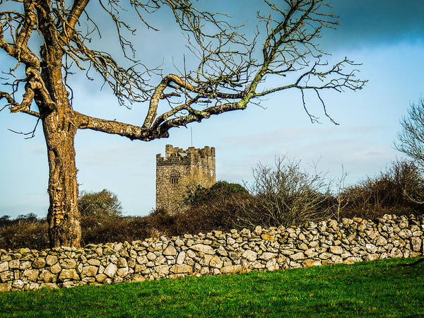 Photograph - Castle In The Irish Countryside by James Truett
