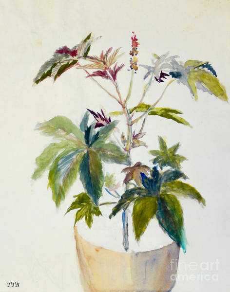 Painting - Castor Bean Plant by Art By - Ti   Tolpo Bader