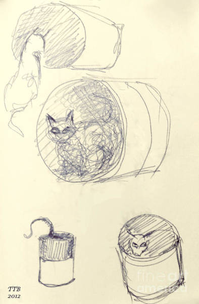 Drawing - Cat And Cans  by Art By - Ti   Tolpo Bader