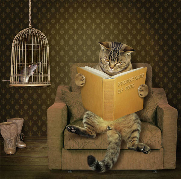 Humor Wall Art - Photograph - Cat And His Pet..... by Iryna Kuznetsova (iridi)