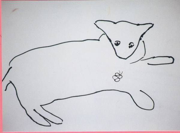 Drawing - Cat Drawing by AJ Brown