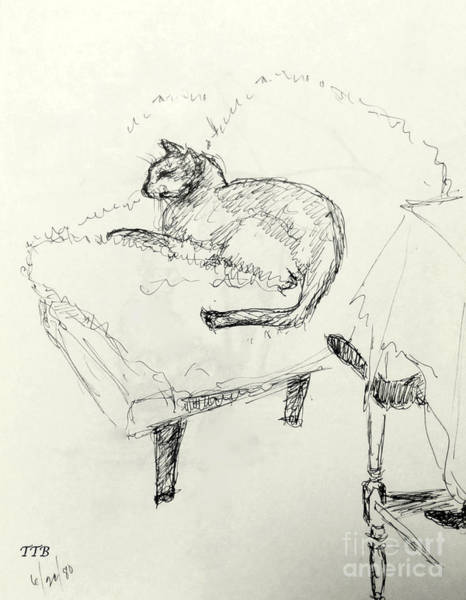 Drawing - Cat Heaven by Art By - Ti   Tolpo Bader