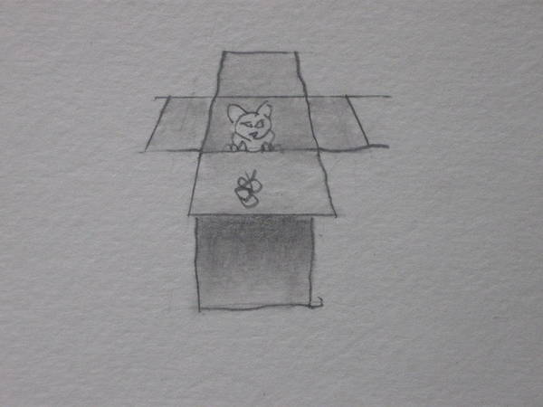 Drawing - Cat In A Box by AJ Brown
