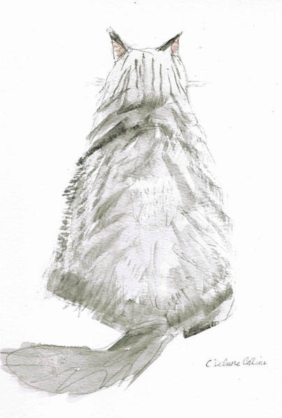 Tabby Drawing - I'm All Ears by Cathy Delnore Collins