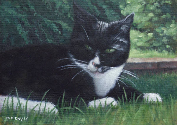 Painting - cat by Martin Davey