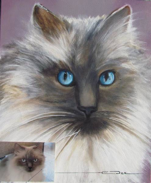 Painting - Cat Portraiture 1  by Eric Dee