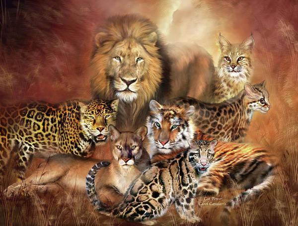 Mixed Media - Cat Power by Carol Cavalaris