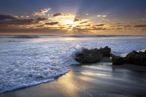 Hobe Sound Photograph - Catching The Light by Debra and Dave Vanderlaan