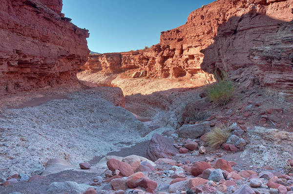 Cathedral Canyon Near Lees Ferry Art Print by Witold Skrypczak
