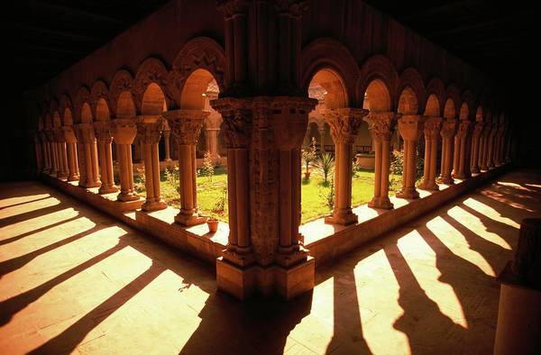 Cloister Photograph - Cathedral Cloisters by Peter Menzel/science Photo Library