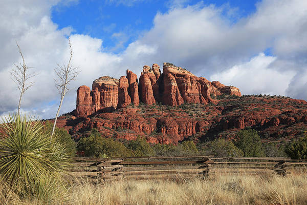 Wall Art - Photograph - Cathedral Rock- Back Side by Donna Kennedy