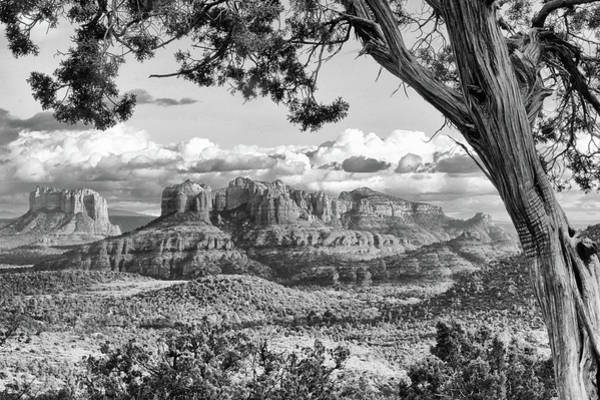 Photograph - Cathedral Rocks - Black And White by Harold Rau