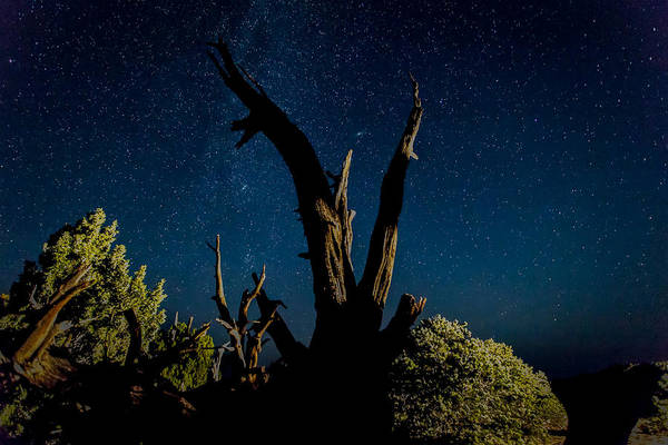 Highway 12 Wall Art - Photograph - Cathedral Valley Night Sky by Jennifer Grover