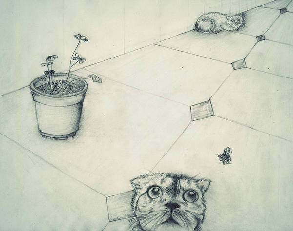 Spontaneous Drawing - Cats And Bee by Monica Magallon