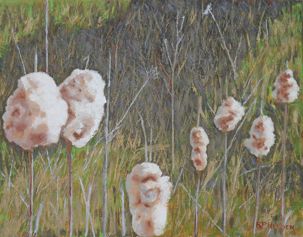Bullrush Painting - Cattails II by Robert P Hedden