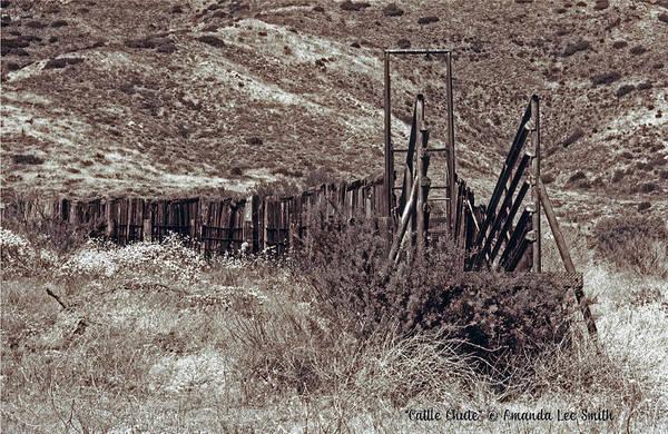 Photograph - Cattle Chute by Amanda Smith
