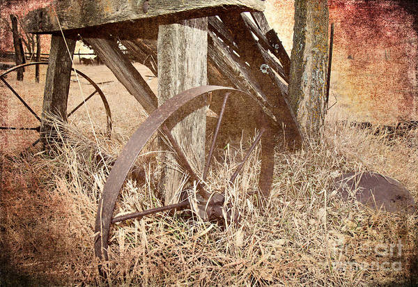 Photograph - Cattle Chute  by Pam  Holdsworth