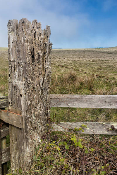 Bore Hole Wall Art - Photograph - Cattle Fence On The Stornetta Ranch by Kathleen Bishop