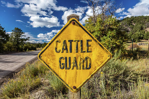 Ridgway Photograph - Cattle Guard Road Sign by Panoramic Images